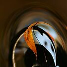 Beech Leaf Abstract by Wayne King