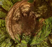 Squirrel Sculpture on path through Prehen Woods,  Derry Sticker