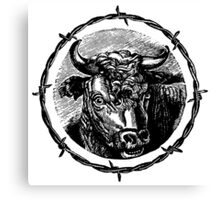 Vintage Cattle Head in Barb Wire frame - Woodcut Canvas Print
