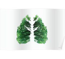 Natures Breath Green Poster