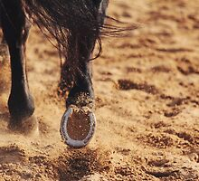 In the Sand by thelimeequine