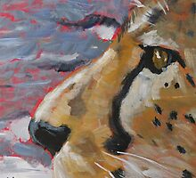 Cheetah by Stephen Haynes