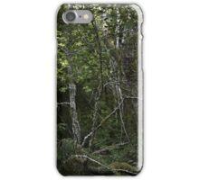 Creekside woods iPhone Case/Skin