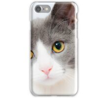 Curious Cat HDR iPhone Case/Skin