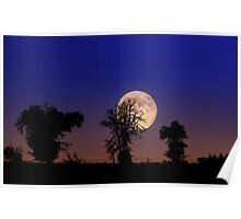 Blue Moon over Buffalo Gap National Grassland Poster