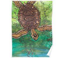 Trevor the Turtle Poster