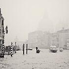 Autumn in Venice, Italy B&W by prante