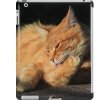 Ginger cat licking fur on garden path iPad Case/Skin