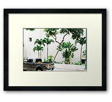 vctn 06 Framed Print