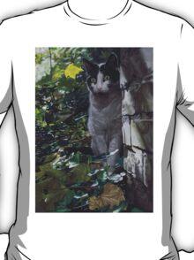 On the Prowl by Karie-Ann Cooper T-Shirt