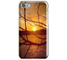 Branches in Sunset iPhone Case/Skin