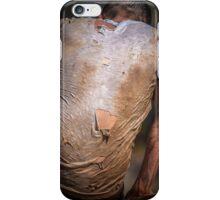 Endurance 6 iPhone Case/Skin