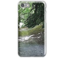 Dappled Shade iPhone Case/Skin