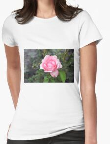 Pink rose, natural background. Womens Fitted T-Shirt
