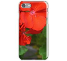 Red vivid flowers and green leaves iPhone Case/Skin