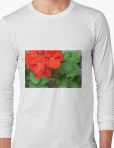 Red vivid flowers and green leaves Long Sleeve T-Shirt
