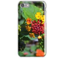 Natural background with colorful flowers and green leaves. iPhone Case/Skin