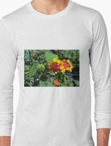 Natural background with colorful flowers and green leaves. Long Sleeve T-Shirt