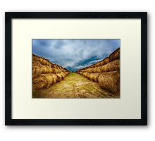Landscape with hay bales on the field after harvest Framed Print