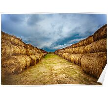 Landscape with hay bales on the field after harvest Poster