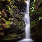 Waterfall, Myrtle Gully, Tasmania #8 by Chris Cobern