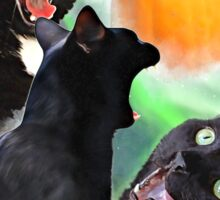 3 Yawning Cats Sticker