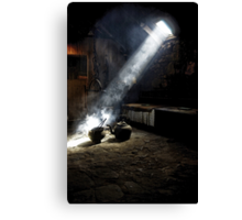 Shedding Light on the Past Canvas Print