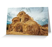Hay bales on the field after harvest Greeting Card