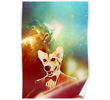 THE 11TH DOGTOR Poster