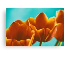 Red And Orange Tulips Flowers Bouquet Canvas Print