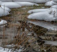 Frozen Pond Sticker