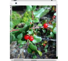 Red Berries iPad Case/Skin