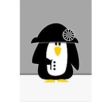 Penguin Bonaparte VRS2 Photographic Print