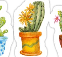 cactus line. watercolor Sticker
