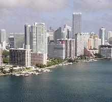 Miami Skyline by Kasia-D