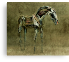 Wooden Horse Canvas Print