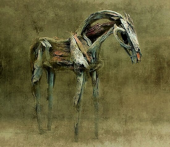 Wooden Horse by SuddenJim