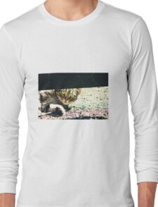 Peeking under the fence Long Sleeve T-Shirt