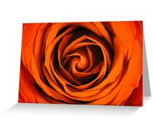 Romantic Red Rose Inside Abstract Greeting Card