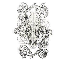 Skull Geometry 1 Photographic Print