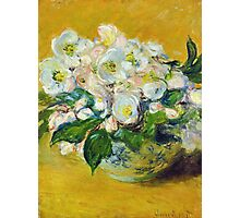 Claude Monet - Christmas Roses Photographic Print