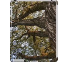 Reaching The Sky [iPad case] iPad Case/Skin