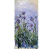 Claude Monet - Iris Mauves  Photographic Print