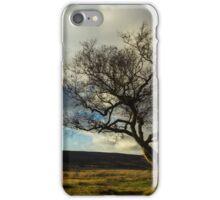 Hawthorn Isolation iPhone Case/Skin