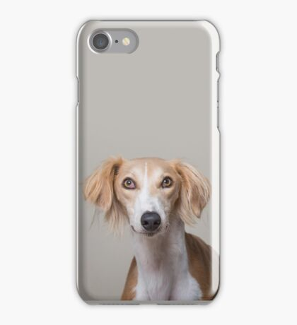 Smug Saluki! iPhone Case/Skin