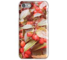 Baies iPhone Case/Skin