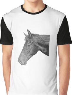 Olly the Horse Graphic T-Shirt