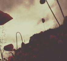 Scary Poppies Sticker