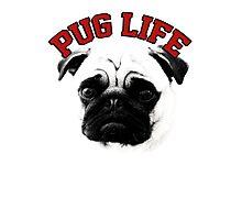 Pug Life Photographic Print