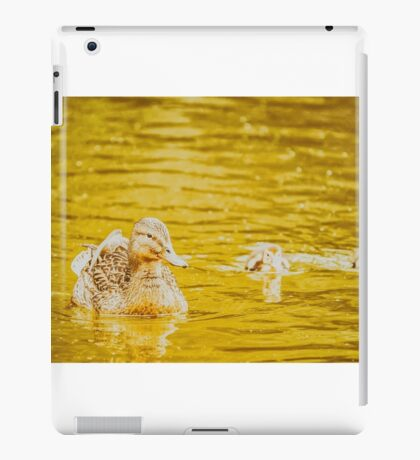 Mother Duck With Small Ducklings On Water iPad Case/Skin